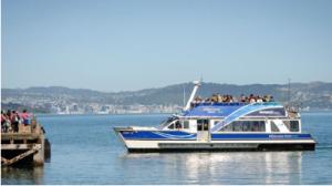 Matiu-Somes Island - Things to do in Wellington