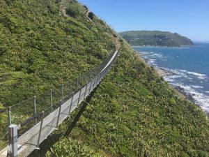 Te Araroa Trail - Things to do in Wellington