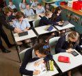 Types of schools in New Zealand