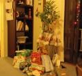 christmas-lime-1