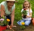 Getting gardening