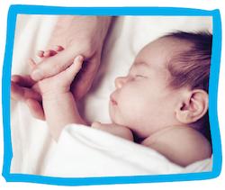 the amazing newborn baby kiwi families
