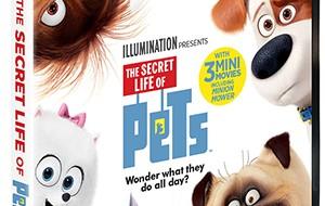 secret-life-of-pets_dvd