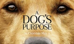 A dogs purpose movie pass