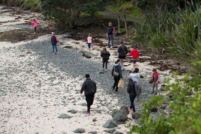 IMAGE - Toyota Kiwi Guardians site at Tiritiri Matangi