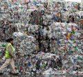 New Zealands City of Waste-Kiwi Families
