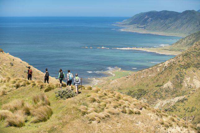 Tora Coastal Walk Wairarapa Trip