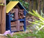 How to Make a Bug Hotel-Kiwi Families