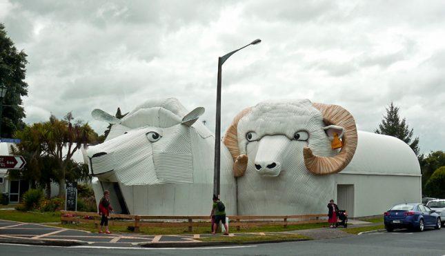 Tirau - Giant Sheep