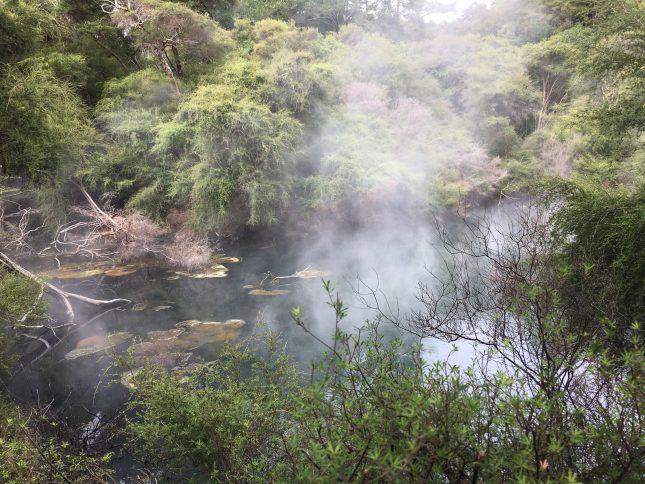 Tokaanu Thermal Hot Pools