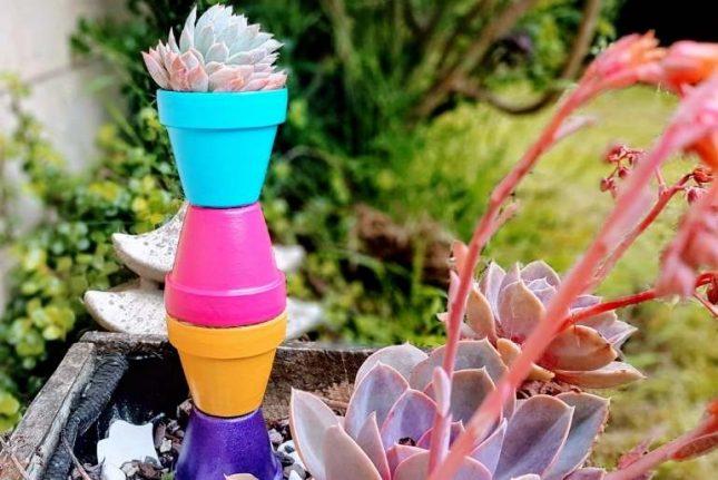 Colourful Terracotta Pot Plant Stand succulent